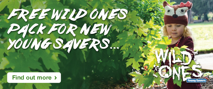 FREE WILD ONES PACK FOR NEW YOUNG SAVERS... Find out more